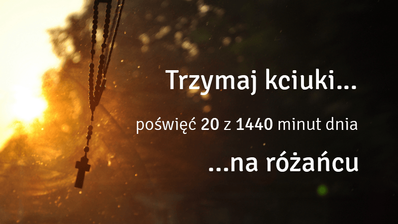 Róże Różańcowe KSM